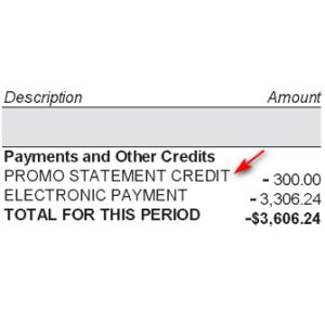 Statement Credit